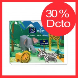 OFERTA: PACK CANSON 100 HOJAS COLORES 50 X 65 CM 30% DCTO