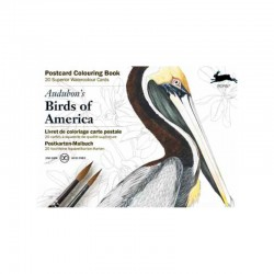 PEPIN POSTCARD COLOURING BOOK BIRDS OF AMERICA