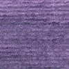 847 Violeta Interferencia